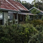 huts at corinna-wilderness-experience