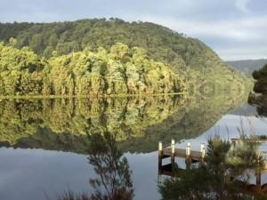 reflections on pieman river tarkine 2016